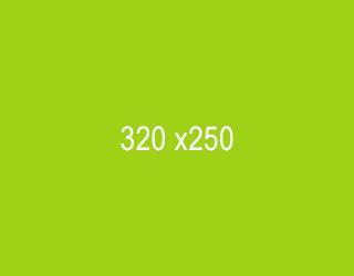 320-x-250